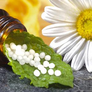 Beehive Natural Foods Poplar Bluff